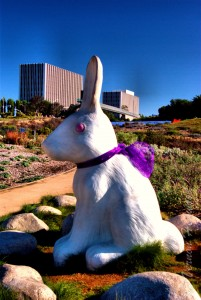 Rabbits wearing purple for Alzheimer's Awareness - Newport Beach Civic Center Park