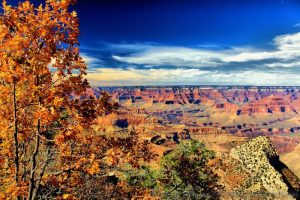 Fall on the South Rim of the Grand Canyon